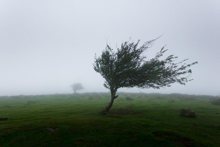 «Sabine» sorgt für stürmisches Wetter und Probleme